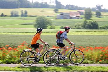 Couple, biking, fields, scenery, landscape, blurred, grain field, flowers, poppy, summer, excursion, bicycles, bikes, . Couple, biking, fields, scenery, landscape, blurred, grain field, flowers, poppy, summer, excursion, bicycles, bikes,