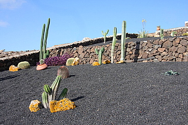 Lanzarote island, Spain, Europe, Canary islands, Femes, travel, volcanism, volcanic Landscape, scenery, garden, cacti, . Lanzarote island, Spain, Europe, Canary islands, Femes, travel, volcanism, volcanic Landscape, scenery, garden, cacti,