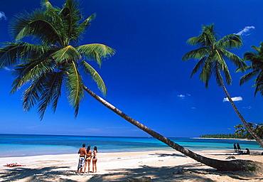 10854215, Las Terrenas, Samana peninsula, Dominica. 10854215, Las Terrenas, Samana peninsula, Dominica