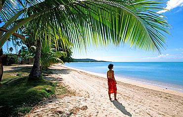 10854331, Day, Puerto Rico, island, islands, Carib. 10854331, Day, Puerto Rico, island, islands, Carib