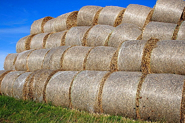 Agriculture, farming, Rolled hay bales