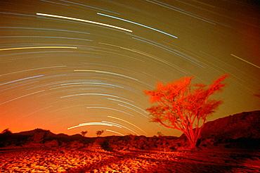 Star trails.Tabiriou canyon, Tibesti, Chad