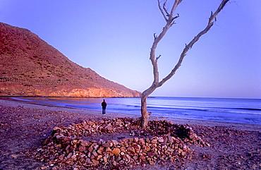 `Ensenada de los Genoveses cove Cabo de Gata-Nijar Natural Park Biosphere Reserve, Almeria province, Andalucia, Spain