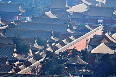 Beijing (China): the Forbidden City roofs