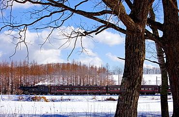 SL Fuyu-no-Shitsugen train, Kushiro Shitsugen National Park , Hokkaido, Japan