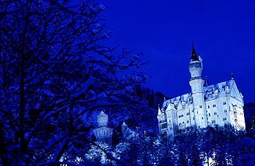 Neuschwanstein castle in a winter night
