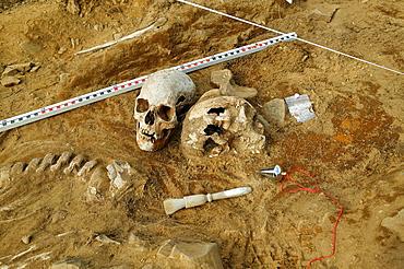 Viking Era Human Skeletal Remains at Archaeological Site, Skagafjordur fjord, Northern Iceland