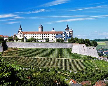 Germany, Wurzburg, Main, Franconia, Bavaria, Marienberg Fortress, Marienberg, vineyard