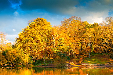 autumn colours at keston pond, keston, kent, england, uk, europe