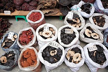 Mushrooms in Qingping market, Guangzhou, Guangdong Province, China