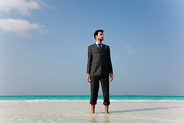Businessman standing on tropical beach, Businessman standing on tropical beach