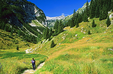 Valley of Lepena in National Park of Triglavski, Slovenia