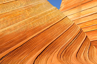 The Wave, a breathtaking work of art, naturally carved in beautiful red and yellow striated soft Navajo sandstone, North Coyote Buttes, Paria Canyon-Vermilion Cliffs Wilderness, Vermilion Cliffs National Monument, Arizona, USA.