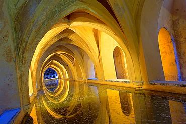 Royal Alcazar, `Banos de Dona Maria de Padilla', baths of Dona Maria de Padilla, Sevilla, Andalucia, Spain