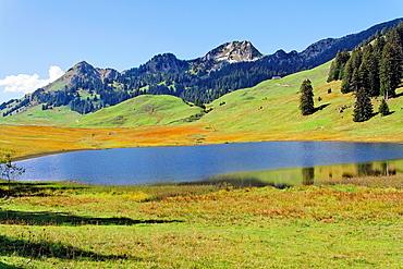 lake grappelensee near village of alt saint johann, toggenburg valley, swiss alpes, canton of saint gall, switzerland