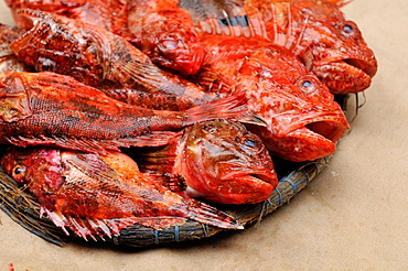 Fresh fish in wicker trays in a staging of an old traditional market, Tossa de Mar, Catalonia, Spain, Europe