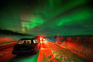 Northern Lights, Abisko, Lapland, Sweden - 817-364141