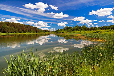 Russia, Pskovskaya Oblast, Pushkinskie Gory, lake at Mikhailovskoye, the Alexander Pushkin Preserve, estate of famous Russian poet
