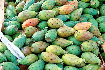 Opuntia the cactus figs at food market in Catania Sicily Italy