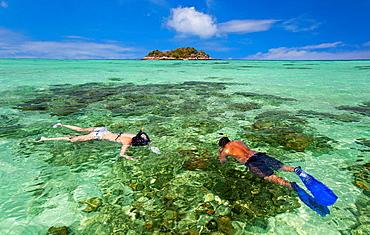 Snorkeling in Ko Lipe, Thailand