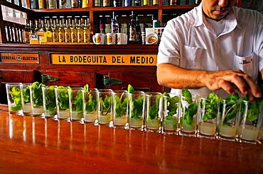 Mojito, La Bodeguita del Medio, a bar in Old Havana (Habana Vieja) popularized by Ernest Hemingway, Havana Vieja District, Havana, Cuba