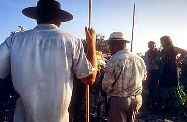 `Carreteros´pilgrims resting near Corral de Felix,Romeria del Rocio, pilgrims on their way through the Donana National Park, pilgrimage of Sanlúcar de Barrameda brotherhood, to El Rocio, Almonte, Huelva province, Andalucia
