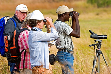 Guide looks for different species to show visiting bird watchers grassland mudflats near Tendaba Camp on Gambia River The Gambia
