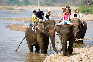 Elephant trek in river near Pai north Thailand