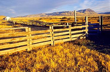 Estancia Alice landscape  El Calafate, Santa Cruz province  Patagonia  Argentina