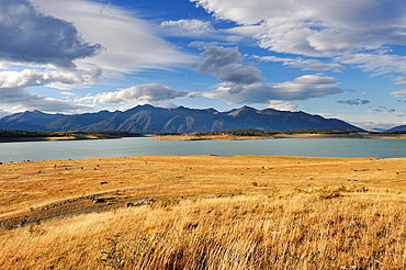 lands of the estancia Nibepo Aike on the Argentino lakeshore, around El Calafate, Patagonia, Argentina, South America