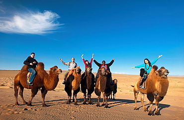 tourists riding twin humped Bactrian camels in the Gobi Desert of Mongolia