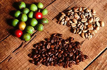 Fresh and roast coffee beans, Grenada