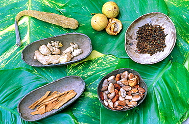 Spices: nutmeg, clove, cacao, cinnamon, ginger and fruit of bread tree, Saint Lucia