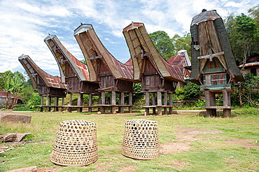 Toraja traditional house in tana toraja, sulawesi,indonesia