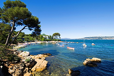 Cap d Antibes, South of France, Small picturesque bay with colourful boats and pine trees