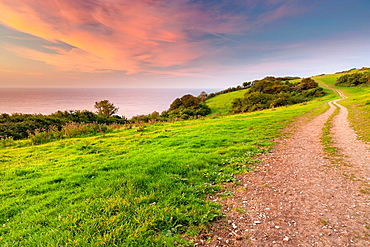 Branscome Path, Jurassic Coast part of the South West Coastal Path, Beer, Devon, England, UK