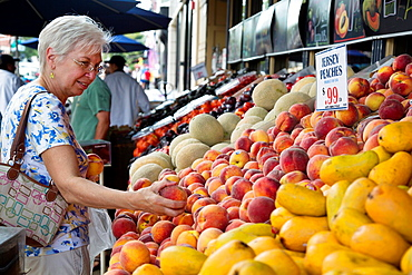 Hoboken, New Jersey - Susan Newell, 63, shops for peaches at Aspen Marketplace  MR