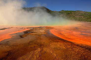 Thermophilic Algae in Grand Prismatic Spring, Midway Geyser Basin,Yellowstone National Park, Wyoming, USA