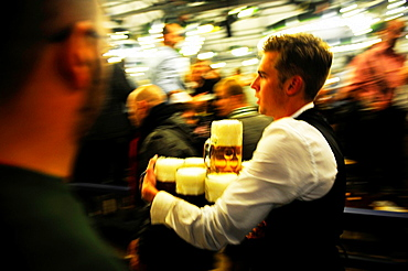 Male waiter with beer steins during Oktoberfest festival in Munich,Germany
