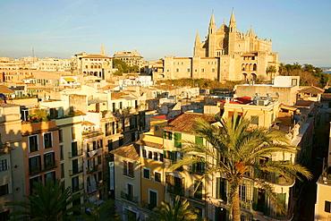 Mallorca Cathedral from the auction The Llotja, XV century Palma Mallorca Balearic Islands Spain