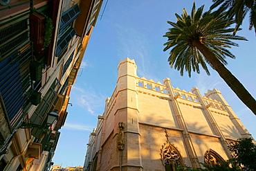 The Llotja, XV century Palma Mallorca Balearic Islands Spain