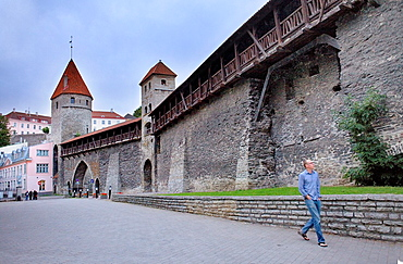 Old city walls in Gumnaasium street,Tallinn, Estonia