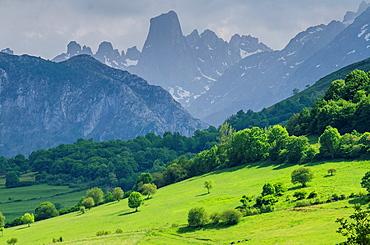 Naranjo de Bulnes panoramic views from mirador del Pozo de la Oracion at Cabrales, Picos de Europa, Asturias, Spain