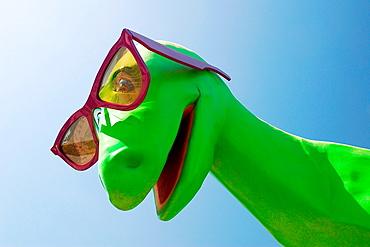 Dinosaur jacks Sunglass Shack