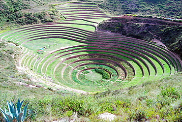 Agricultural terraces of Moray, Peru.