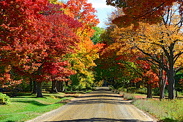 Country road with colorful fall leaves autumn trees Wisconsin