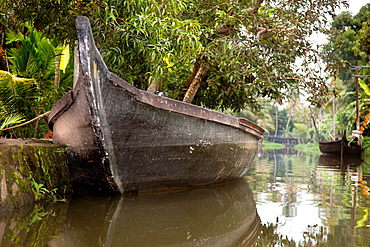 Boats moored in the calm waters of a canal in Alappuzha