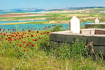 Euphrates river, Landscape, Adiyaman Province, East Turkey, Turkey