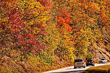 Colorful autumn foliage as leaves change colors along the Blue Ridge National Park near Asheville, North Carolina
