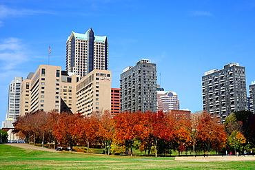 St  Louis Skyline MO in the autumn Cityscape